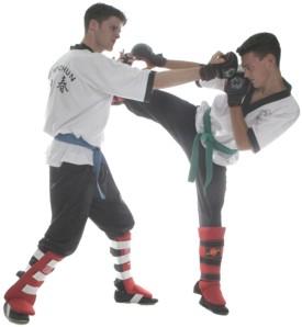 Wing Chun Kung Fu Den Haag